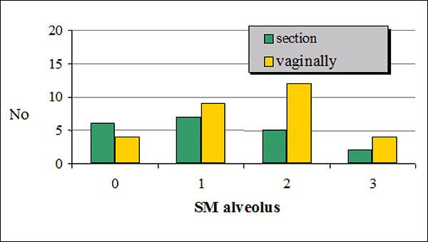 Caesarean section and vaginally Graph 3a: Grade of SM colonization in newborns Graph 3b: Grade of SM colonization in newborns