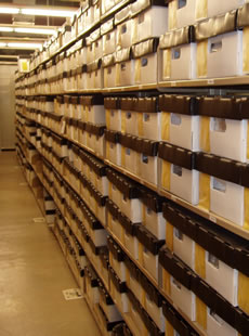 archive must become a place of teaching and hands on learning.