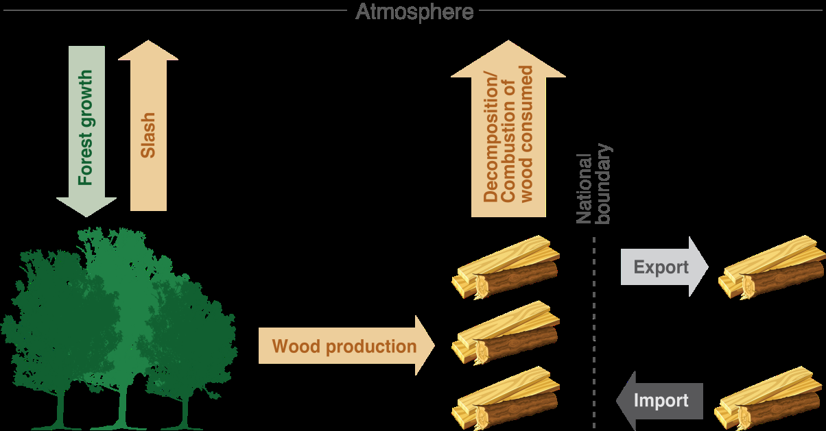 42 Understanding Land Use in the UNFCCC 5. Harvested Wood Products Harvested wood products are products entirely or partly made of wood.