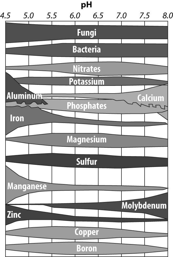 nutrient availability (Figure 3). Plant roots can only absorb nutrients after they have been broken down into certain ion forms.