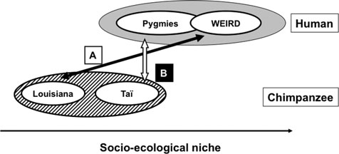Commentary/Henrich et al.: The weirdest people in the world? construction (environmental adaptations that favor and reinforce cultural characteristics; Laland et al. 2000).