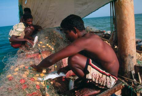 WWF-CANON/MARK EDWARDS Artisanal fishing is at the heart of many MPA strategies, in the knowledge that closing areas to fishing can dramatically reverse decline of fish