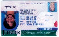 Illinois Driver s Licenses/ID Cards Driver s License ID Card Commercial Driver s License (CDL) Temporary Visitor Driver s License (TVDL) Under 21 Driver s License Under 21