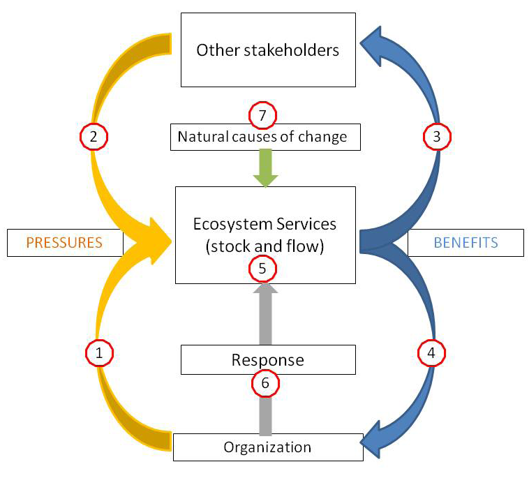 Sustainability Today: The Readers Verdict 3. Benefits gained by other stakeholders from ES (directly and indirectly). 4. Benefits gained by the organization from ES (directly and indirectly). 5.