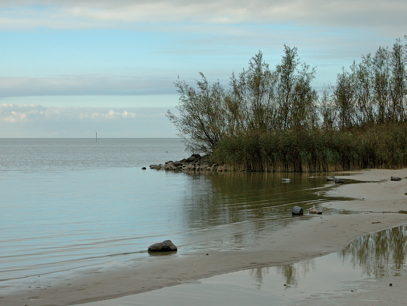 The wetlands along the shores of the IJsselmeer help to protect low-lying