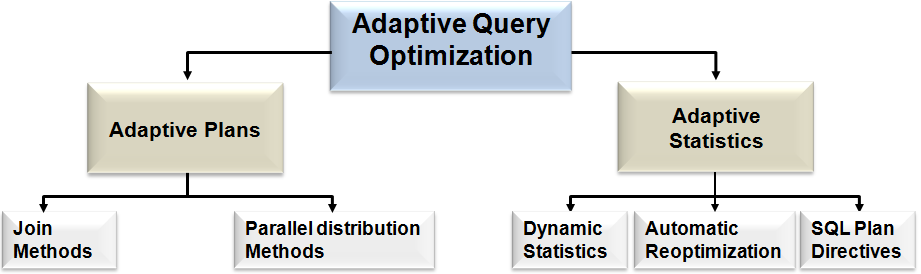 New Optimizer and statistics features Adaptive Query Optimization By far the biggest change to the optimizer in Oracle Database 12c is Adaptive Query Optimization.