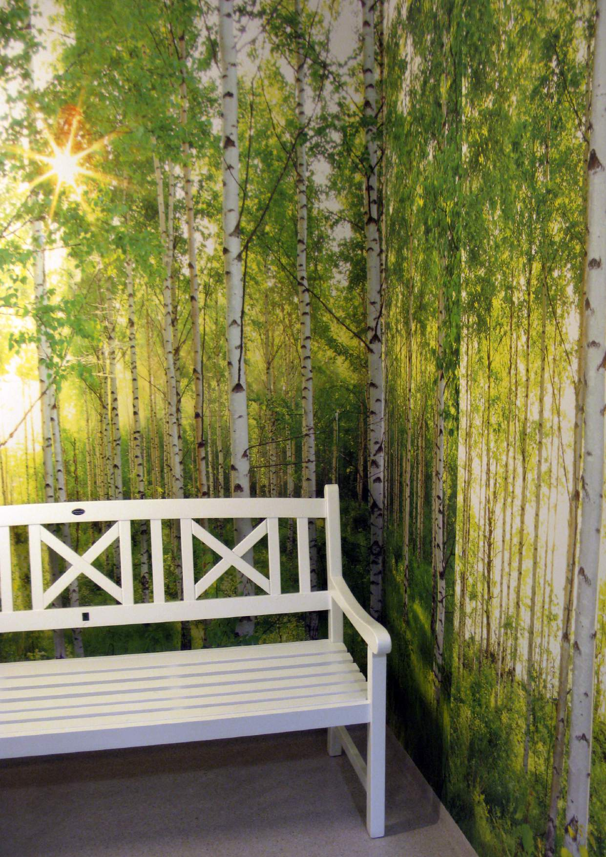 Figure 8: Bringing outside in through life size photographic wallpaper and