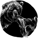 Bear Communication It helps to understand bear language. BEARS COMMUNICATE IN DIFFERENT WAYS. Bears communicate by seeing, touching, vocalizing, and smelling.