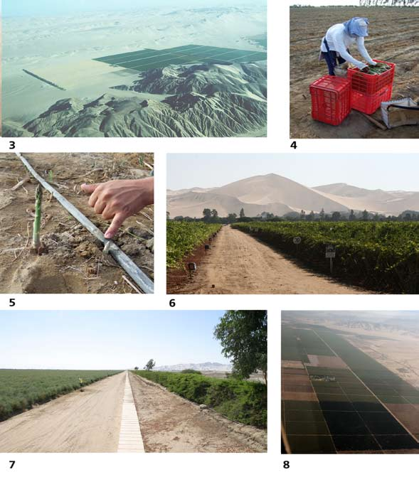 Drop by drop page 26 Plates 3-8 3 Ongoing expansion of the agrarian frontier for asparagus in Ica the land to the left is under preparation through mixing desert sands with compost such as chicken