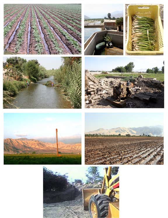 Drop by drop page 44 14 15 16 17 18 19 20 21 Plates 14-21 14, 20 Small to medium sized farms employing flood irrigation to artichokes and at planting.
