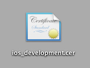 This development cert