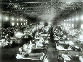 Be Prepared for a Flu Pandemic 7 History and Background Pandemic Flu History A pandemic is a global disease outbreak.