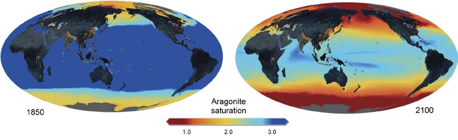 4), due to latitudinal differences in temperature and future warming, affecting CO2 solubility, and basin-scale (and more local) circulation patterns and their future changes.