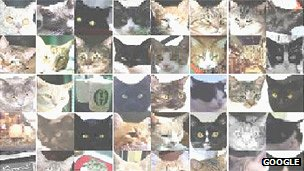 Figure 10. Images Identified as Cats by Google X Labs Team Using a Neural Network of 16,000 Processors Source: British Broadcasting Company (June 26, 2012, http://www.bbc.
