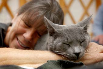 Socializing Very Shy or Fearful Cats 15 Tips....................... Talk to the cat in a soothing voice while you are working with him.