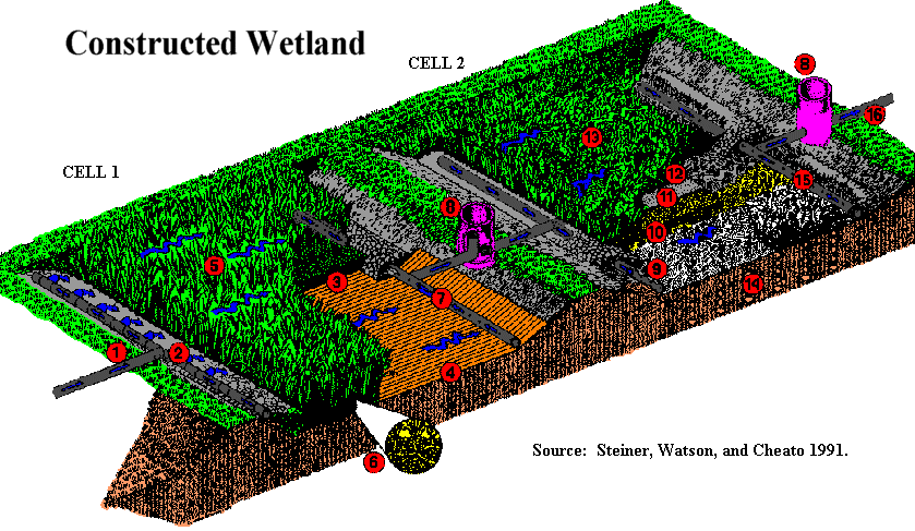 Wetland Design The example above is one that is used for sewage treatment but has many of the aspects desired in a constructed wetland for storm water runoff.