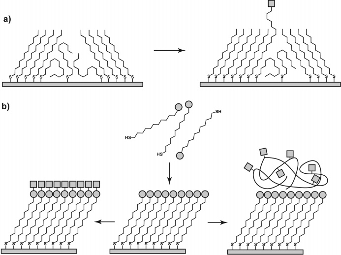 Self-Assembled Monolayers of Thiolates Chemical Reviews, 2005, Vol. 105, No. 4 1123 Scheme 1.