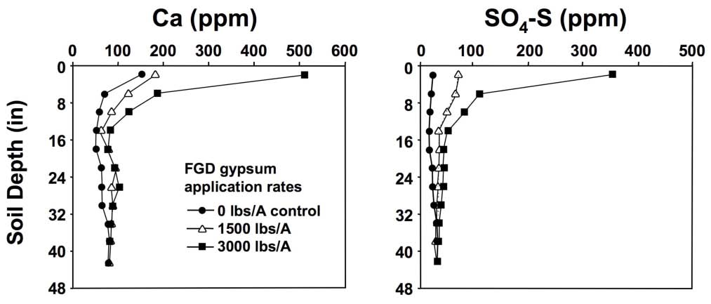 Figure 2-9. Calcium and sulfur movement into soil profiles is enhanced by the addition of gypsum. These data were obtained six months after gypsum application. (Chen et al., 2005.