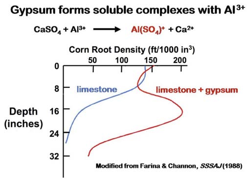 However, FGD gypsum can ameliorate the phytotoxic conditions arising from excess soluble aluminum in acid soils by reacting with Al 3+, thus removing it from the soil solution and greatly reducing