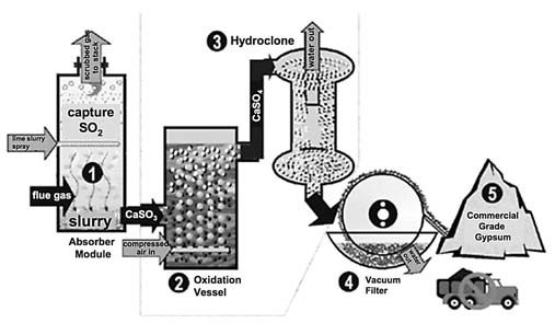 Figure 1-3. Schematic of the scrubbing process to produce FGD gypsum. (Dontsova et al., 2005.) Production of FGD gypsum has gradually increased over the past several years (Table 1-1).