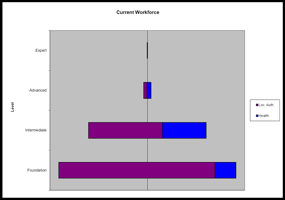 43 Figure 5: Workforce competency levels For Leeds there was a close match between the current levels of competencies and future,