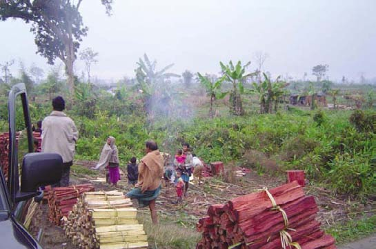 PART I The Where and Why of Deforestation and Forest Poverty In an Assam (India) forest severely