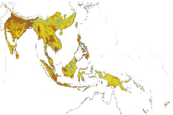 AT LOGGERHEADS? Map 1.4 Domains in Asia s Tropical Forest Biomes Domains Mosaiclands Forest edge Forest core Source: Authors calculations; see appendix B.