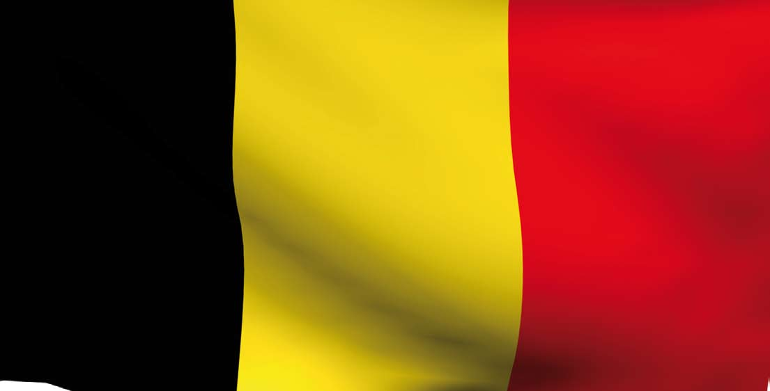 Belgium In Belgium, a new reform of the federal state has had an impact on the local and regional organisation of the country.