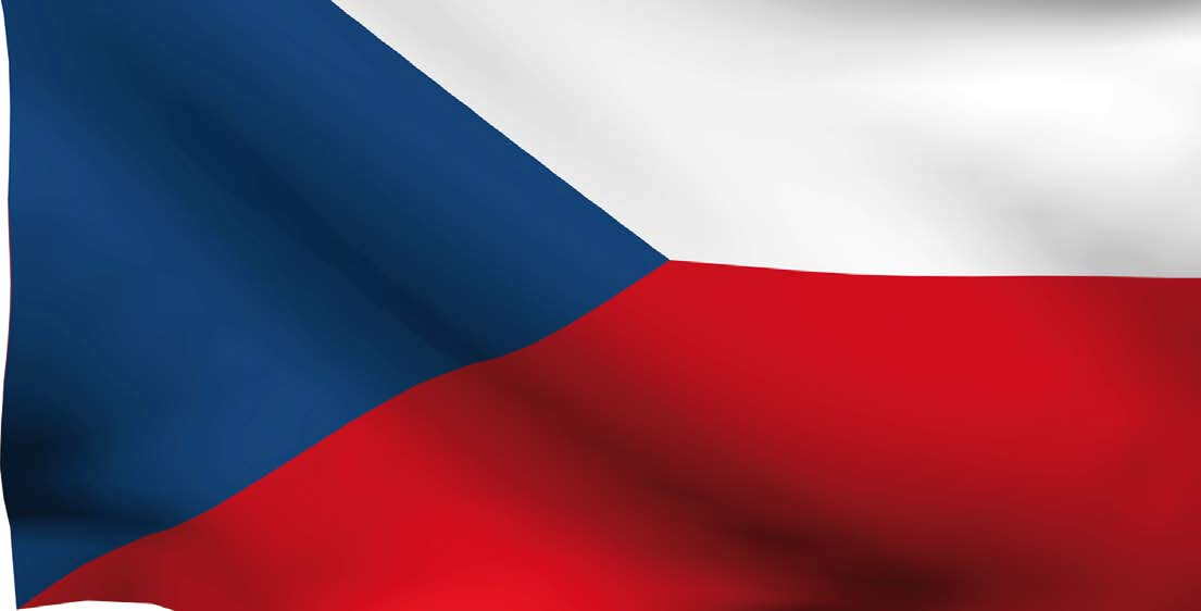 Czech Republic Withdrawal of certain delegated competences for the smallest municipalities Establishment of a new financing system for local authorities Reorganisation of municipal services and