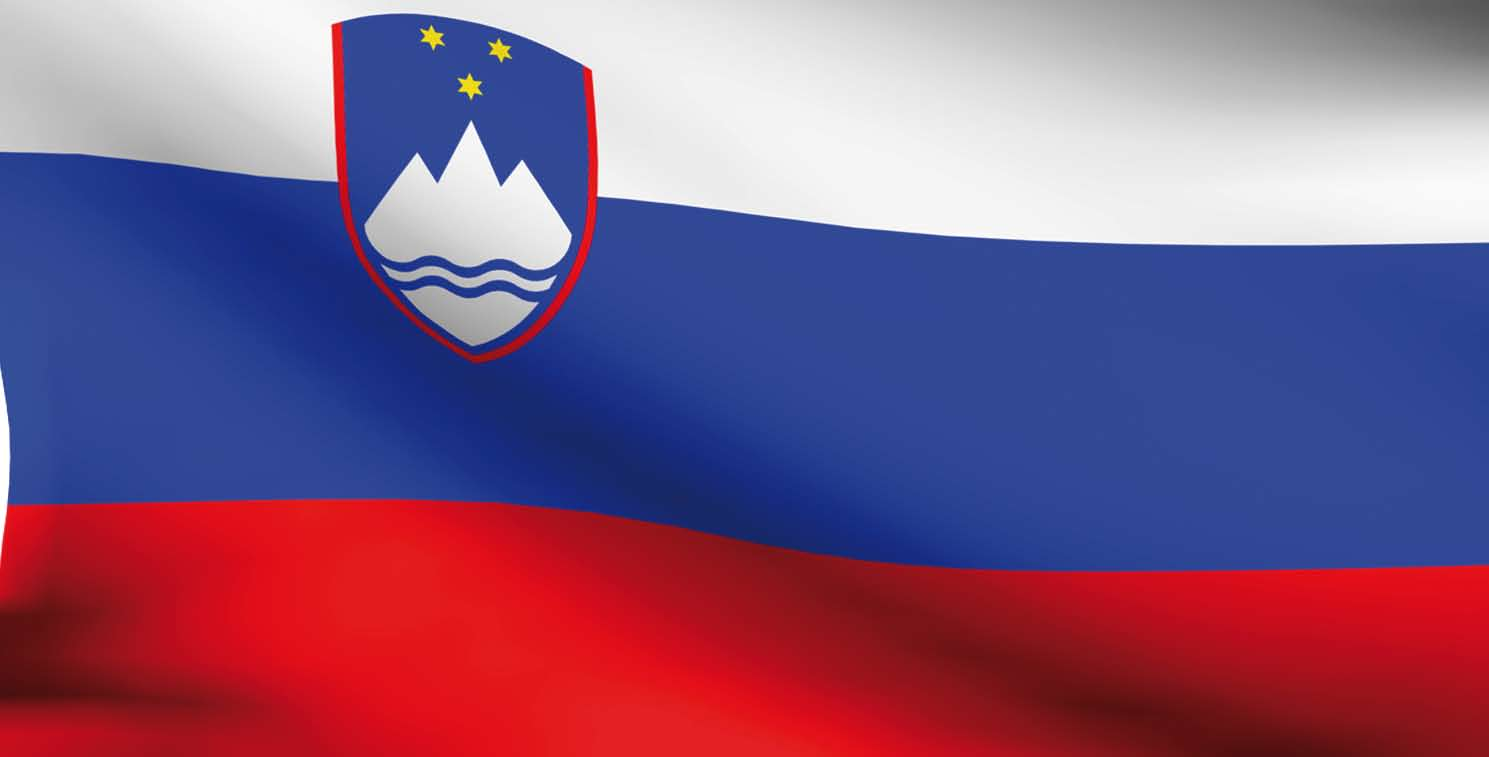 Slovenia Reform affecting local mandates Changes in the financing of municipalities Own revenues of local governments will become shared taxes Attempt of ad-hoc territorial reforms through