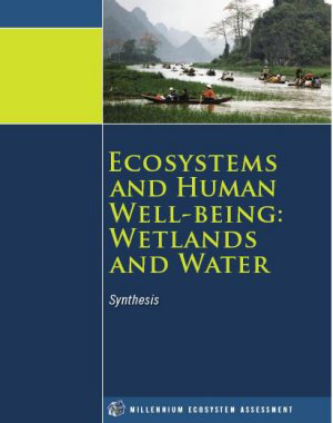Ramsar handbooks for the wise use of wetlands, 4th edition Additional information Millennium Ecosystem Assessment Ecosystems and Human Well-being: A Framework for Assessment The Millennium Ecosystem