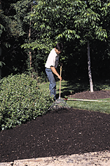 Application rates will vary depending upon soil conditions, climate, compost characteristics, and plant species to be established.