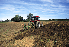 Instructions for Compost Used as a Soil Amendment for: Field Nursery Production Step 1: Step 2: Step 3: Incorporate compost to a depth of 6-10 inches, with deeper tillage necessary for high