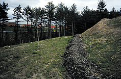 A 1 1/2 foot high by 3 foot wide berm of compost should then be placed at the base of the sediment fence and over the fabric lip. The compost will serve as a prefilter for the sediment fence.