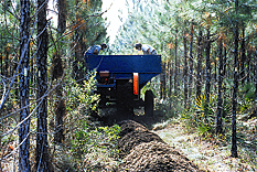 Instructions for Compost Used as a Soil Amendment for: Silvicultural Crop Establishment Step 1: Step 2: Apply compost with a front-end loader, grading blade, manure spreader, blower, York rake, or