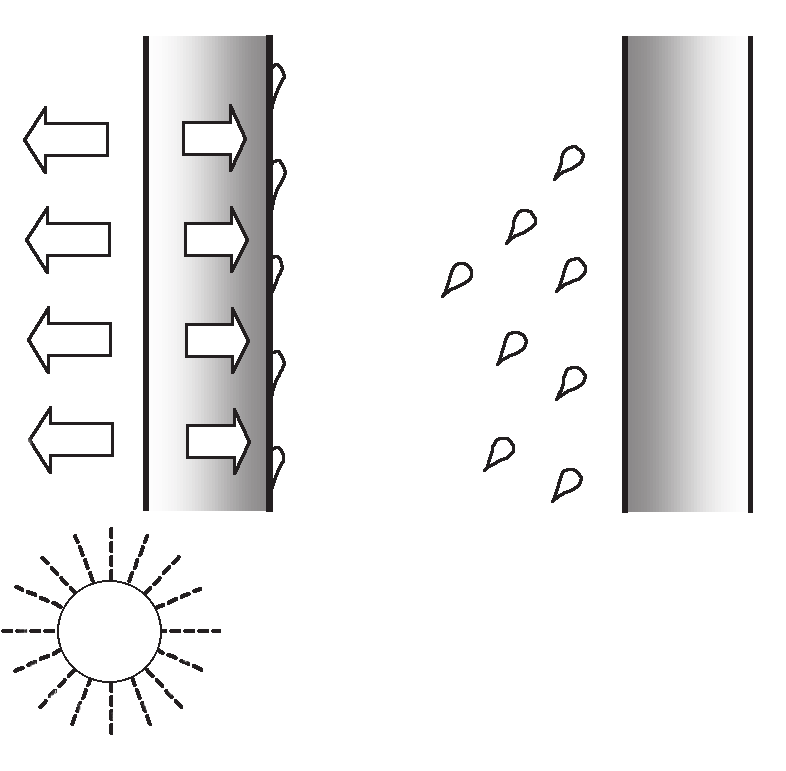i) Solar-driven moisture This is a process where moisture can be driven into a wall when rain is followed shortly after by sunshine. There are two stages operating, as shown in Figure 11.