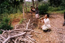 A woman from a very poor family collecting firewood interest rate of 25% per month or by selling their crops to the intermediary at a much lower price than usual.