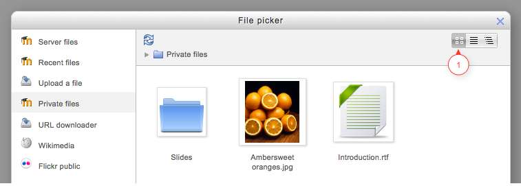 Viewing yur files in the file picker There are three ways t view files in the File