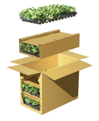 Protect flowers and plants from temperature extremes that may occur during shipment or after delivery at the recipient s location; for climate protection, see the perishables section of the How to