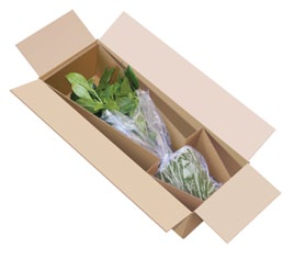 The soil inside the box must also be contained. Place the pot in a plastic bag and secure the top opening of the bag around the stem of the plant.