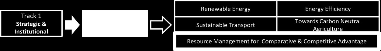 TRACK 1 STRATEGIC AND INSTITUTIONAL ACTION Resource management: An approach to resource management that provides a competitive and comparative advantage in international trade and factor flows In a