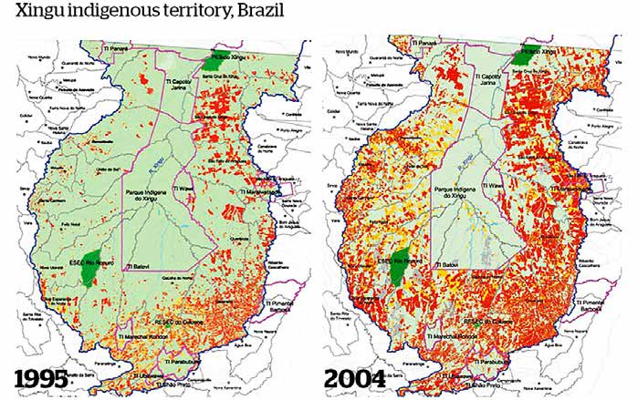 Parks need people to stop deforestation Satellite images provide clear evidence for the role of indigenous territories in preventing deforestation.