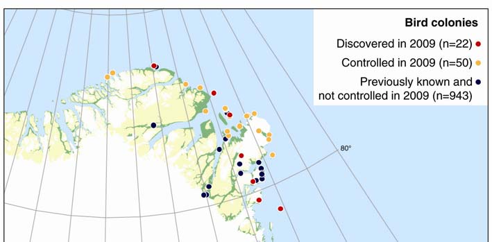 Figure 40. Distribution of seabird breeding colonies seen in July and August 2009.
