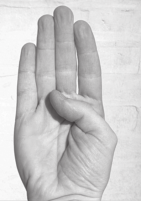Worlds within Words 233 Figure 7.10 Three varieties of the b hand sign found in the world s sign languages.