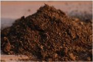 Clinoptilolite Sphagnum peat moss Increase C mineralization