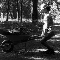 Tools for Lifting and Hauling Wheelbarrows Wheelbarrows help carry rocks or dirt to or from the work-site.