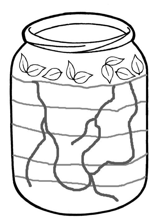 Jar Wormery Leaves Layer of Compost Worm Tunnels Layer of Soil Layer of Compost The picture above shows how to set up a jar wormery. The jar used needs to be a suitable size, e.g.
