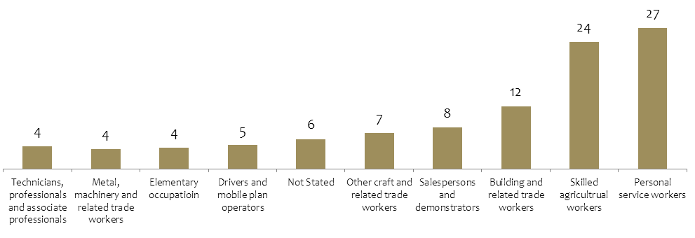 OCCUPATIONAL DISTRIBUTION OF SYRIAN WORKERS Agricultural activities (24 per cent) and domestic/personal services, such as driving or housekeeping, (27 per cent) provide most of the employment for