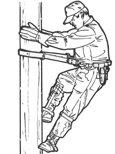 9 With both gaffs firmly embedded in the pole, slide the safety strap up the pole.