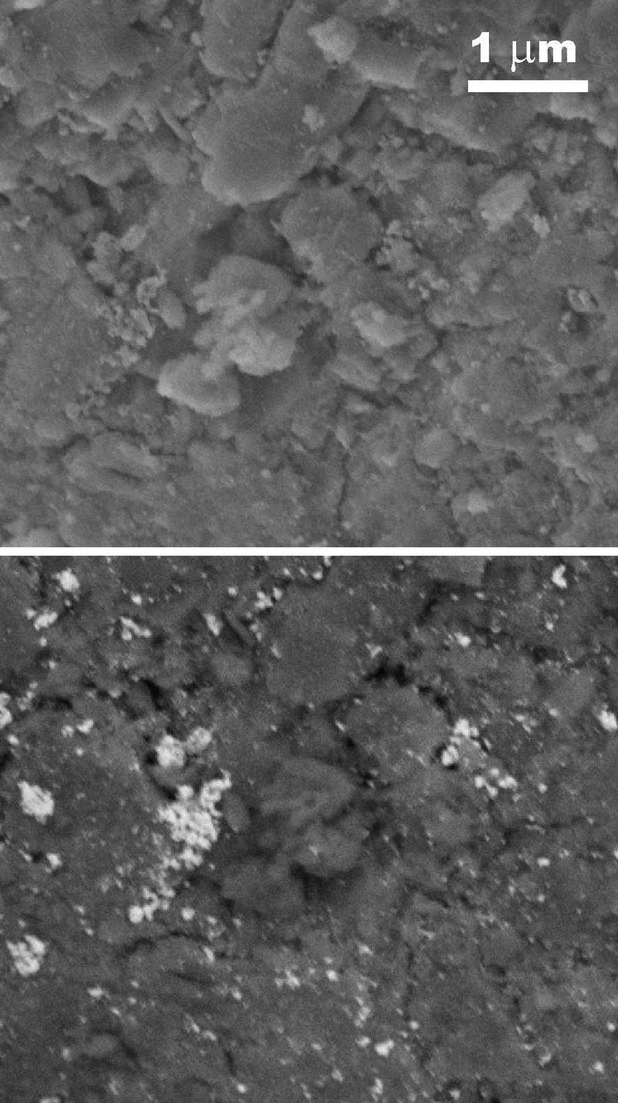 Figure 15: (a) TEM and (b) HAADF-STEM image of Pd balls on silica. The overlap regions are relatively dark in (b) and bright in (b), respectively, due to the increased thickness there.